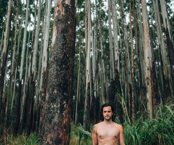 forest_BlakeWisz